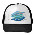 Plant cell wall diagram trucker hat