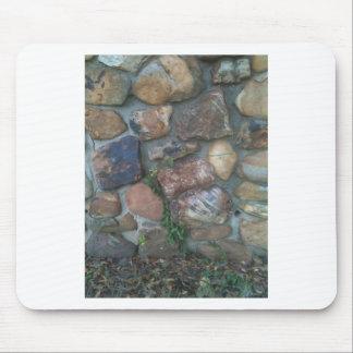 Plant climbing a stone wall mouse pad