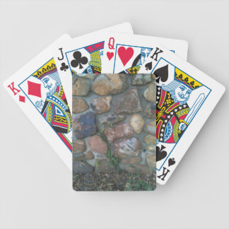 Plant climbing a stone wall bicycle playing cards