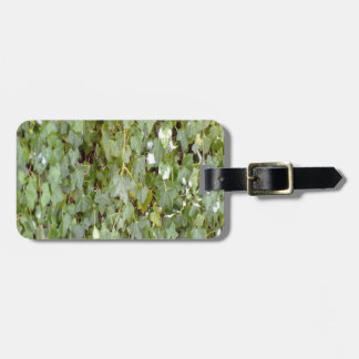 Plant covering stone wall bag tag