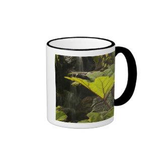 Plant detail at a botanical garden, Ecuador Ringer Mug