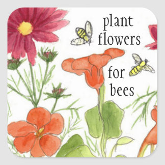 Plant Flowers For Bees Nasturtium Flowers Square Sticker
