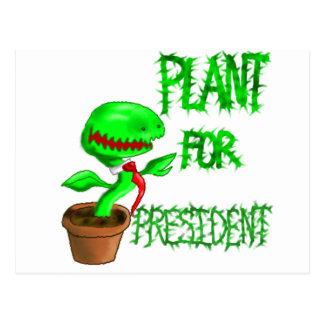 Plant For President Postcard