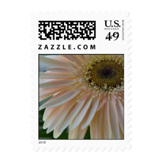 Plant for the Cure Flower Postage