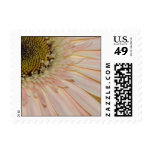 Plant for the Cure Flower Postage Stamps