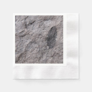Plant Fossil 350 Million Yr. Old Printed Coctail Coined Cocktail Napkin