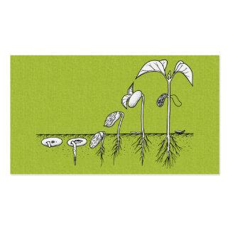 Plant Germination Illustration Business Cards