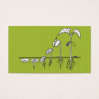 Plant Germination Illustration Business Card