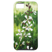 plant iPhone 5 cover