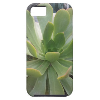 Plant iPhone SE/5/5s Case