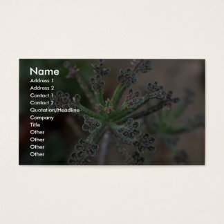 Plant Kalanchoe Business Card
