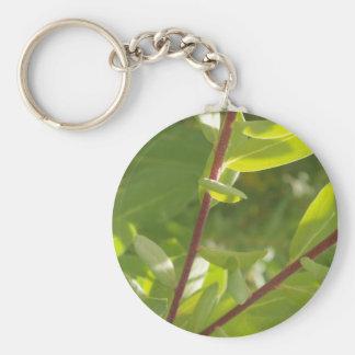 Plant Keychain