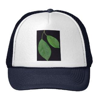 Plant Leafy Ornamental Trucker Hats