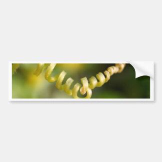 plant  leaves bumper sticker