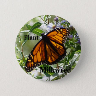 Plant Milkweed Button