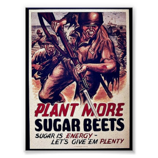 Plant More Sugar Beets Poster