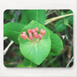Plant Mouse Pad