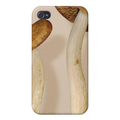 Plant - Mushrooms - I'm so proud of my daughter iPhone 4/4S Case