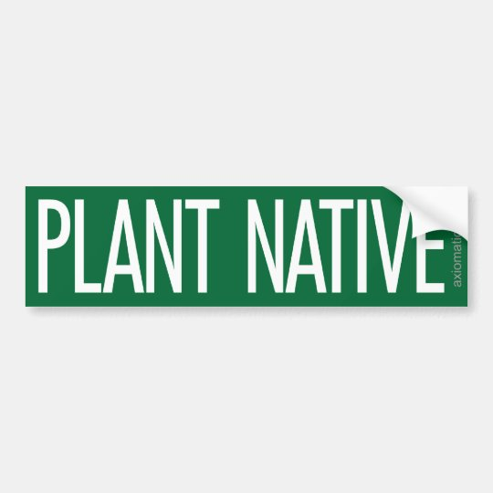 Plant native g bumper sticker
