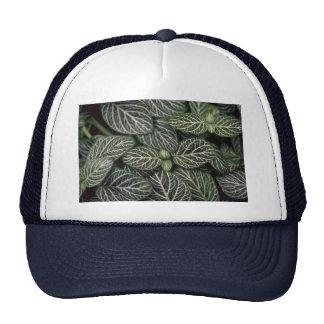 Plant Nerve Plant Trucker Hat