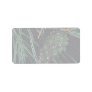Plant Pine Cone Address Label