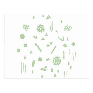 plant plankton postcard