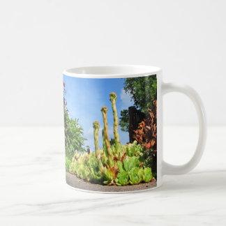 Plant Plinths ~ mug