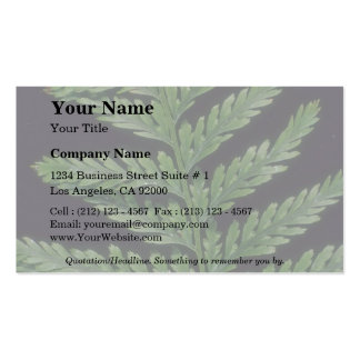 Plant Polystichum Double-Sided Standard Business Cards (Pack Of 100)