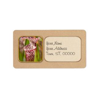 Plant - Pretty as a pitcher plant Label