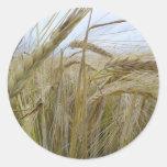 Plant Rye Seed Round Sticker