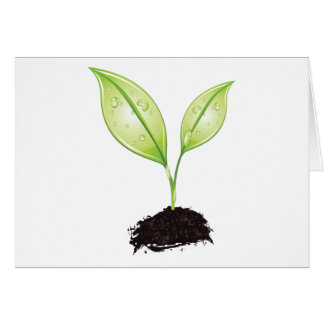 Plant ~ Seedling Green Earth Leaf & Root Seed Greeting Card