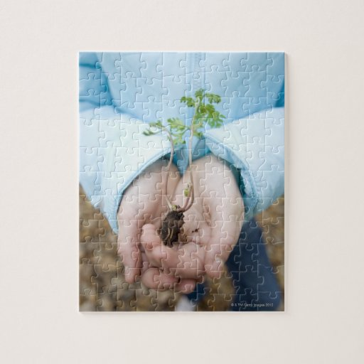 Plant seedling jigsaw puzzle