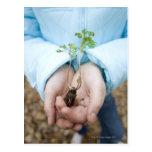 Plant seedling postcard