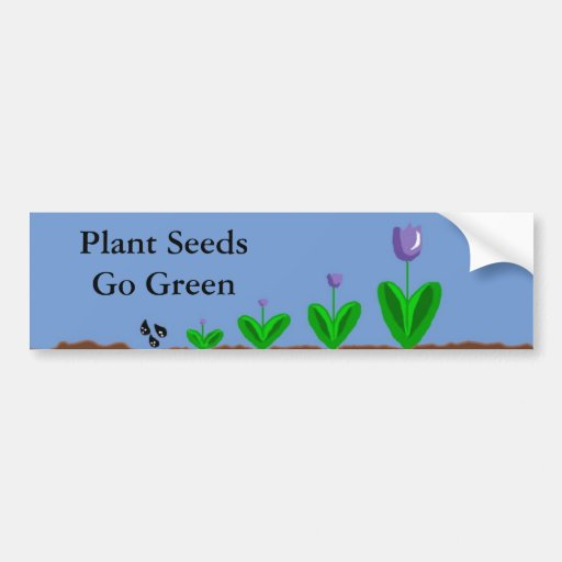 Plant Seeds...Go Green Bumper Stickers