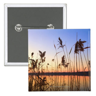 Plant Silhouette by Lakeside sunset 2 Inch Square Button
