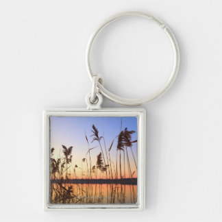 Plant Silhouette by Lakeside sunset Keychain