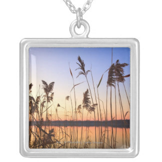 Plant Silhouette by Lakeside sunset Silver Plated Necklace