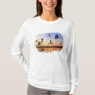 Plant Silhouette by Lakeside sunset T-Shirt