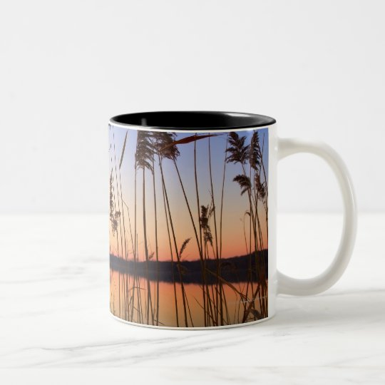 Plant Silhouette by Lakeside sunset Two-Tone Coffee Mug