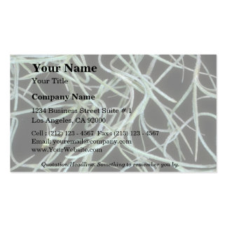 Plant Spanish Moss Double-Sided Standard Business Cards (Pack Of 100)