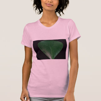 Plant Spatula Tee Shirt