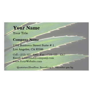 Plant Spiky Cicada Double-Sided Standard Business Cards (Pack Of 100)
