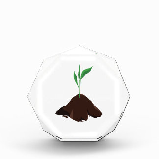 Plant Sprout Acrylic Award