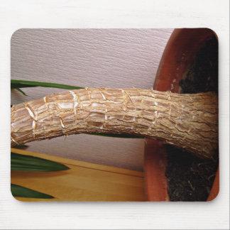 Plant Stem Mousepads