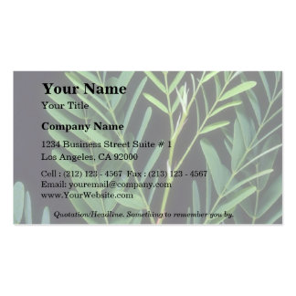 Plant Tamarindus Double-Sided Standard Business Cards (Pack Of 100)