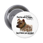 Plant the Seeds of Change Pinback Button