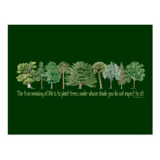 Plant Trees Postcard