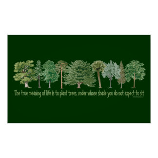 Plant Trees Posters