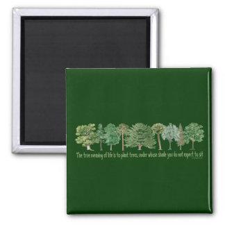 Plant Trees - Tree Lover, Hugger 2 Inch Square Magnet