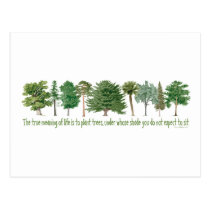 Plant Trees - Tree Lover, Hugger Postcard